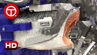 How Salmon Fillet Are Made in Factory  How It&#39s Made 01