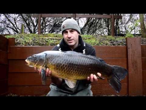 Vinny's Vlog, Stables Carp Fishery – DNA Baits, carp fishing