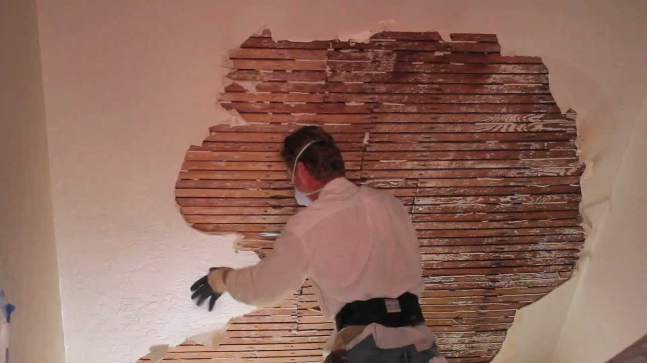 Remove and repair interior plaster on walls and ceilings ...