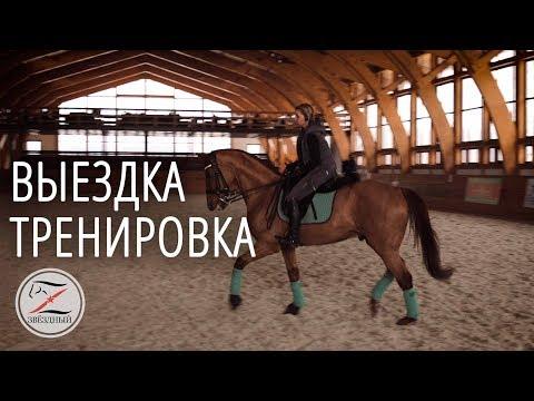 Выездка. Тренировка у Виктора Петровича Угрюмова