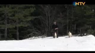 2012 ERDAL TABAK SERDAR KILIÇ DOĞADA NTV ÇEKİMİ