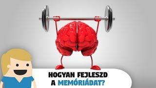 Hogyan fejleszd a Memóriád? 8 módszer a memóriád f...