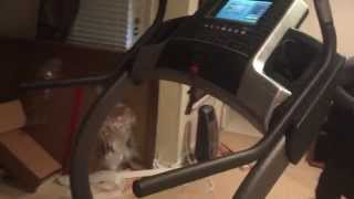Treadmill Assembly Service In Ashburn Va By Furniture Assembly Experts Llc