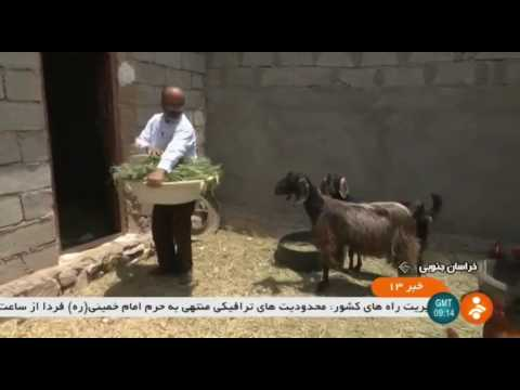 Iran DoReh rural district, Sarbisheh county, Clergyman helps people روحاني و مردم دهستان دوره ايران