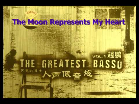 The Moon Represents My Heart 月亮代表我的心