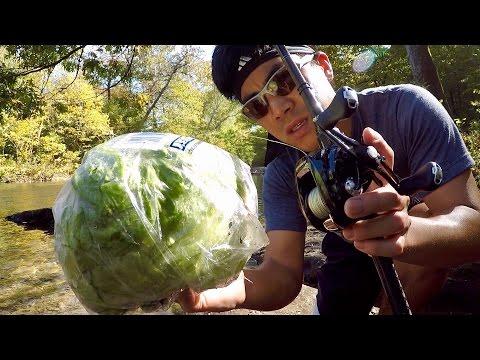 WEIRDEST FISHING CHALLENGE EVER??? (Lettuce vs. Fly Rod)