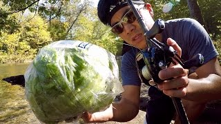 weirdest fishing challenge ever lettuce vs fly rod
