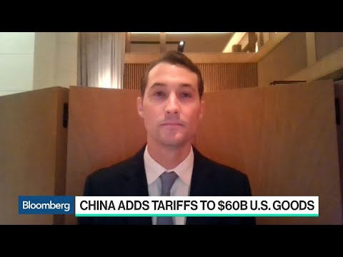 U.S. Tariffs Will Hurt China Long Term, MSA Capital's Harburg Says ...