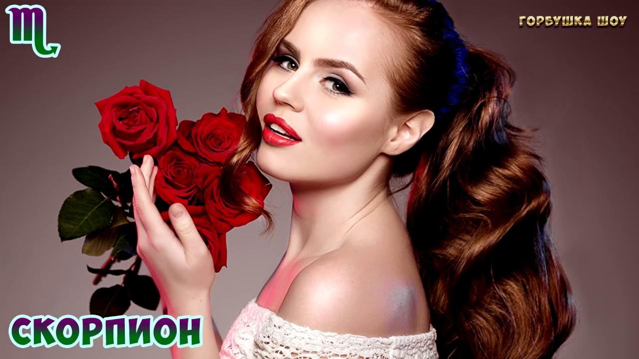 Какие Цветы Любят Знаки Зодиака? Что Подарить Девушке и Как Правильно Выбрать Цветы в Подарок?