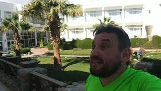 2020 11 обзор отеля Квин Шарм в Шарм Эль Шейхе