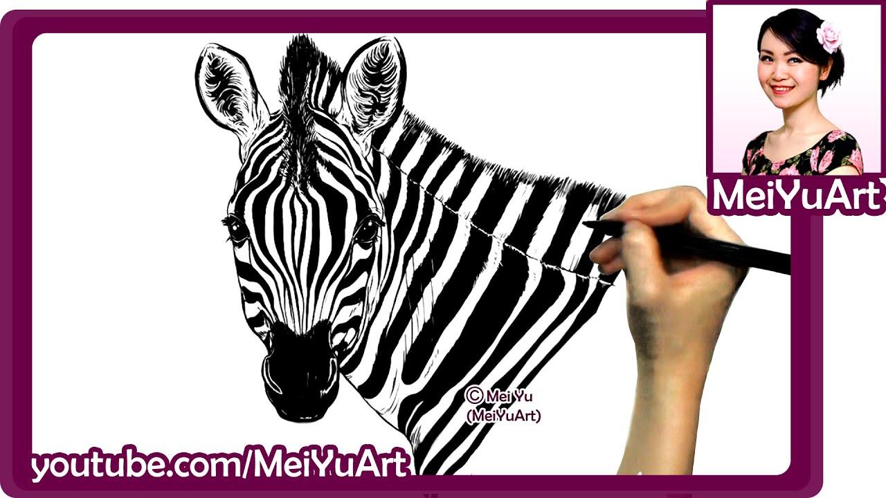 Art Challenge Realistic Zebra Drawing Drawing Popular