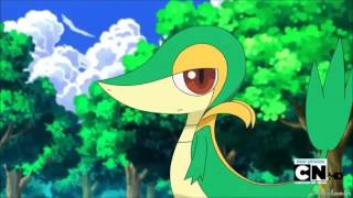 Snivy AMV - Let it rock