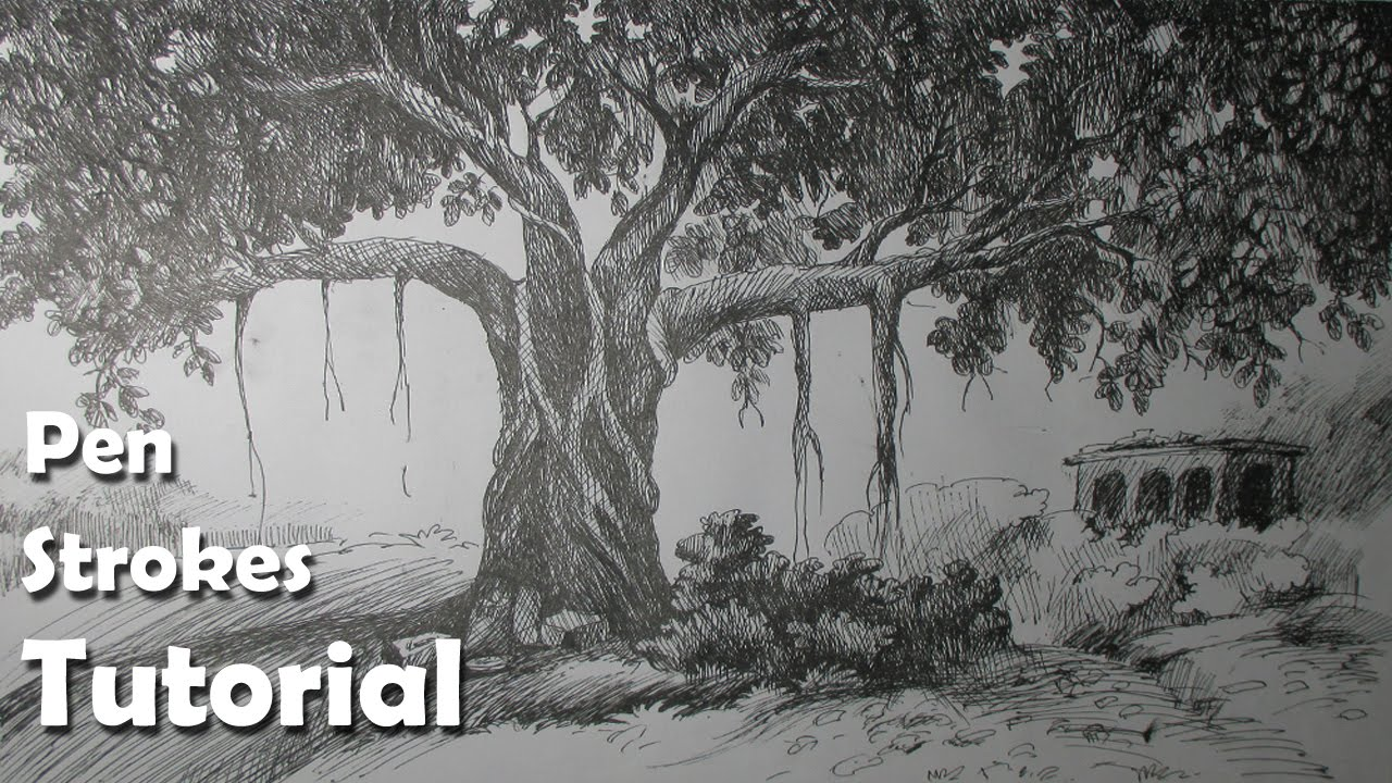 pen ink drawing tutorial how to draw a realistic tree step by step youtube. Black Bedroom Furniture Sets. Home Design Ideas