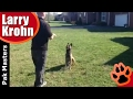 Dog Training - Hand Signals vs Verbal Commands