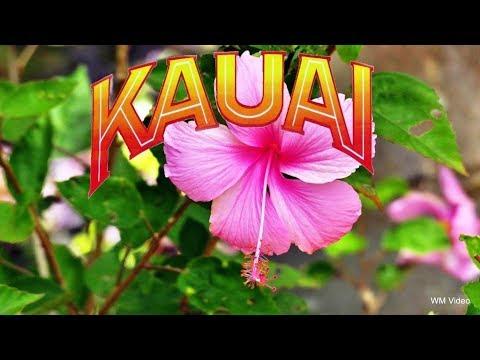 Hawaii 2017 - 1.Teil KAUAI