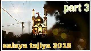 Salaya tajiya 2018 [part 3] ||by status 4 u||