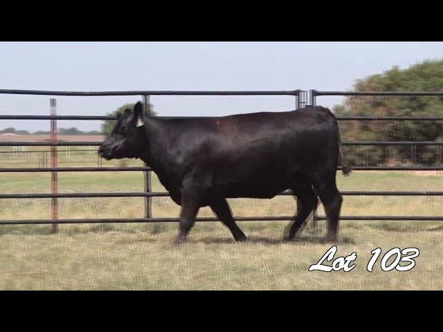 Pollard Farms Lot 103
