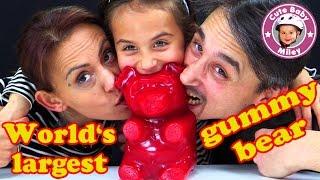 world's largest gummy bear | der WELTGRÖßTE GUMMIBÄR | Kanal für Kinder