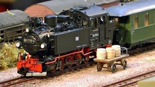Miniatur Modellbahn Special - Schmalspurbahn auf hohem Niveau! De Bimmelbahner!
