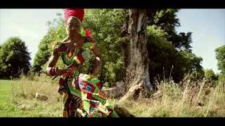 lioness fonts from a baobab tree video 1roar records vpal music