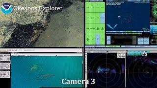 Camera 3: Exploring the Central Pacific Basin