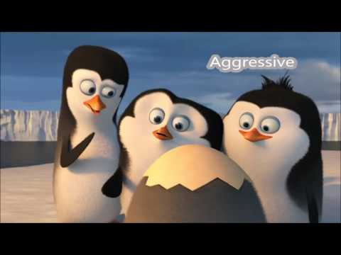 Assertiveness examples