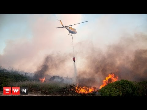 Runaway fires devastate the Cape's Elgin Valley