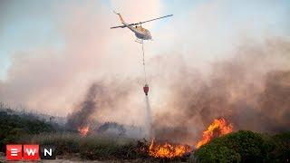 Runaway fires devastate the Cape's Elgin Valley