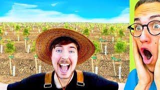 I Reacted To MrBeast Planting 20,000,000 Trees #TeamTrees