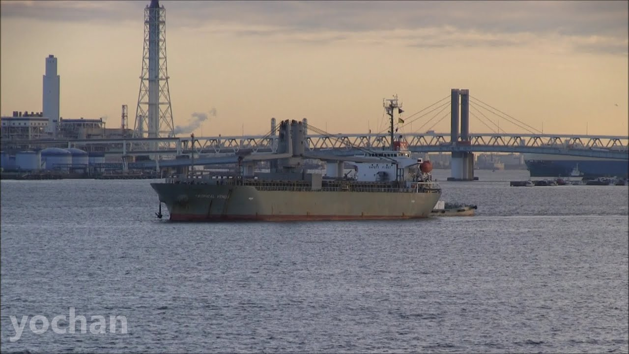 General Cargo Ship: TROPICAL VENUS (K Line, IMO: 9430014) Arrival