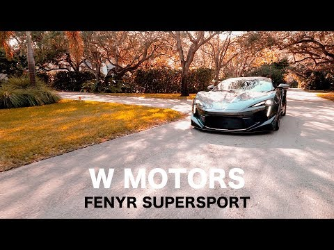 THE 1ST US REVIEW OF THE $2 MILLION W MOTORS FENYR SUPERSPORT