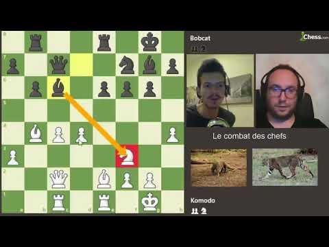 Le Dragon de Komodo contre le Lynx Roux aux échecs