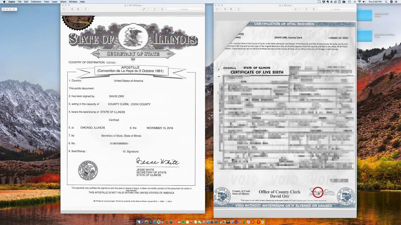 Illinois Birth Certificate Apostille Youtube