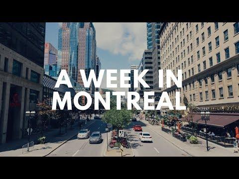 Download lagu baru A week in Montreal // TAYLOR LEIGH di ZingLagu.Com
