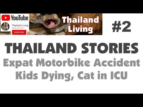 Thailand Expat Stories #2 - Tragic Accident, Kids Dying 🇹🇭 Thailand Living