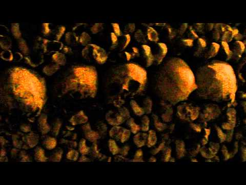 Skull and Bones of the Catacombs Paris