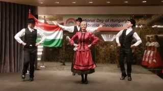 Hungarian National Day Reception in Taiwan 23 October 2013