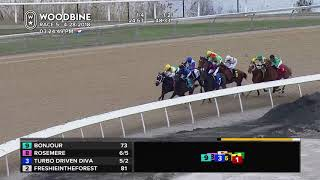 Race 5 from Woodbine, April 28, 2018.
