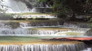 Ochrana životního prostředí jako firemní princip- MEWA šetří přírodní zdroje