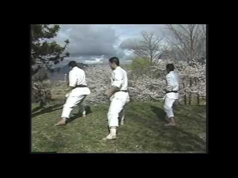 Bassai Dai {Shotokan kata}