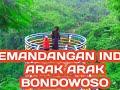 Arak Arak Bondowoso , Wisata Termurah Di Bondowoso