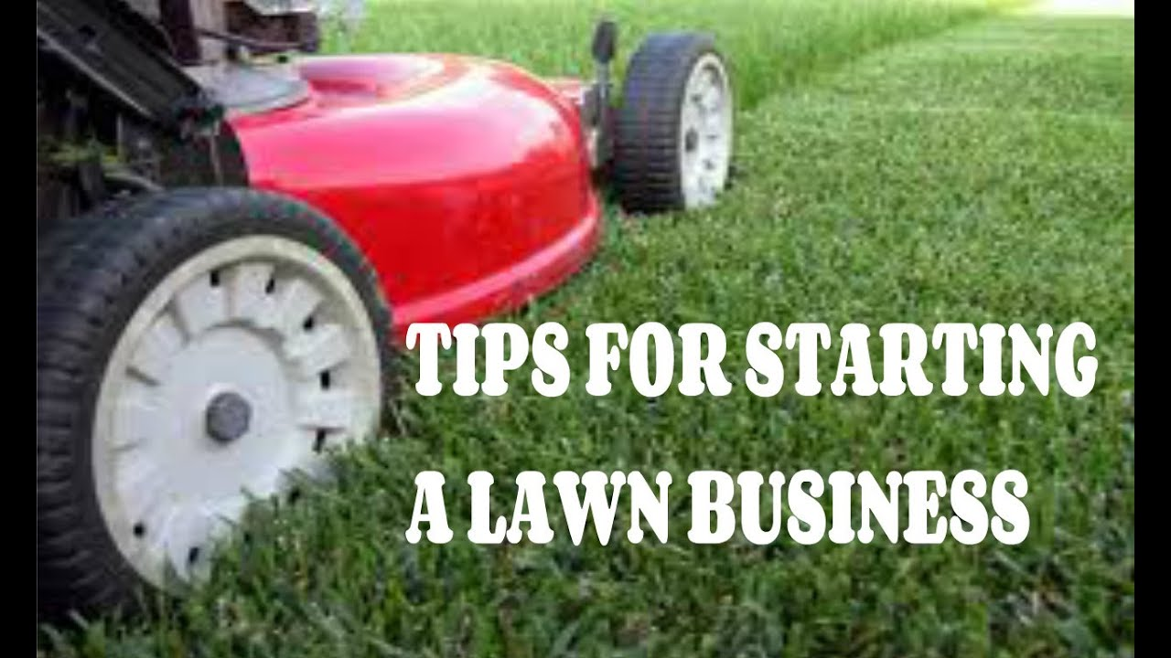 Lawncare business yeniscale lawncare business colourmoves