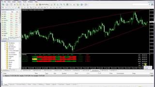 Forex trading signals Indicator-Daily forex signals