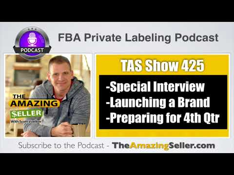 How This Test (Side Hustle) Turned Into 6 Figures And Still Growing - TAS 425 – The Amazing Seller