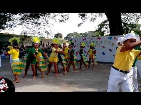 Festival de 10 de mayo Samba Santa Fe Veracruz