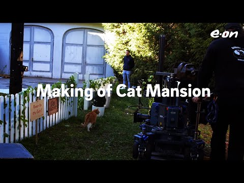 Making of Cat Mansion