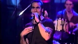 Watch Rollins Band Liar video
