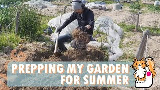 I'm done with my foot surgery and got recovered after a month! I decided to make compost in the garden with leftover vegetable and cultivated the garden for the ...
