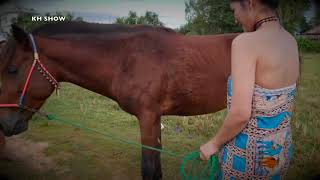 01 Fantastic, How to Wash and Care for Your Horse's , My Sister Learn How To Bath  A Horse in Villag