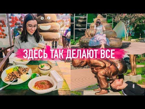 ЕДИМ КАКАШКИ // ЗДЕСЬ ТАК ДЕЛАЮТ ВСЕ // Irina Dream & Maxi Show